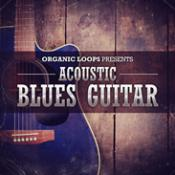 Acoustic Blues Guitar Samples Download and Reviews