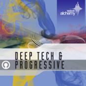 Deep Tech And Progressive Audio Loops