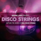 Disco Strings Music Production Samples