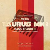 Moog Taurus MK 1 – Bass Expander Professional Samples Download and Reviews