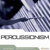 Best Professional Audio Samples – Percussionism
