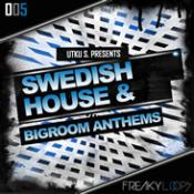 Swedish House and Big Room Anthems Audio Samples